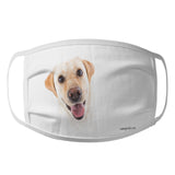 Animal Pride - Yellow Lab Photo - Adult Unisex Face Mask
