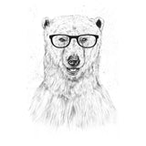 Geek Bear - Women's Fitted T-Shirt
