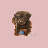 Chocolate Lab Puppy - Women's Fitted T-Shirt