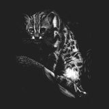 Leopardcat on Black - Women's Fitted T-Shirt