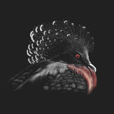 Victoria Crowned Pigeon on Black - Women's Fitted T-Shirt