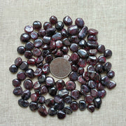 Capricon Red Garnet Healing Crystal