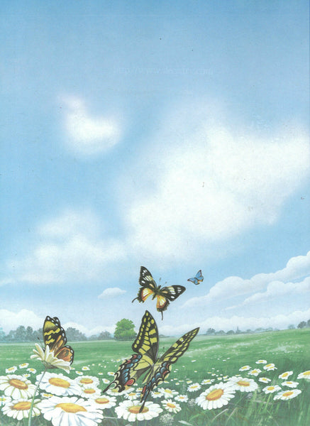 Decadry OPF-3653 Butterflies Themed A4 Letterhead Writing/Printing Paper