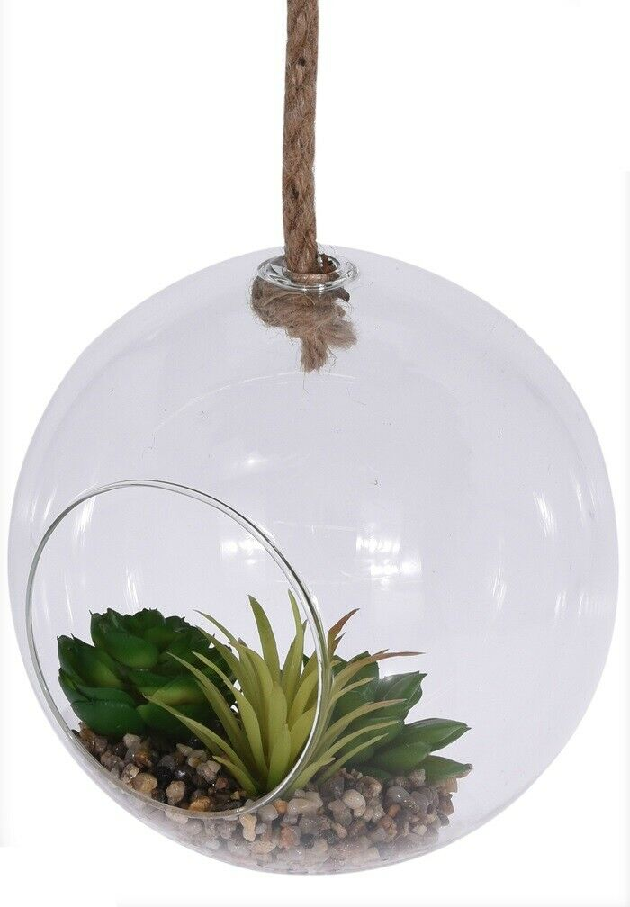 Hanging Glass Terrarium Globe With Rope 18cm Diameter With Plants & Stones