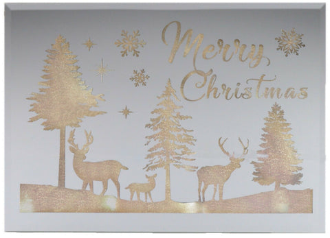 Winter Scene Deer & Snowflake Christmas Mirror Light
