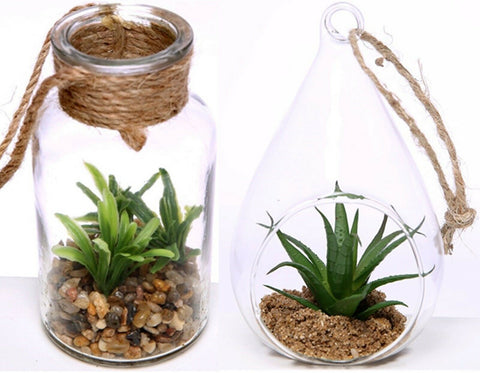 Artificial Succulent Plant In Glass Bottle Or Teardrop With Rope To Hang