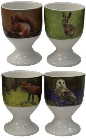 Leonardo Collection Fine China Set Of 4 Egg Cups Wildlife Collection Design
