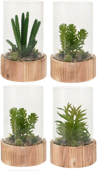 Decorative Artificial Exotic Plants In Bell Jar With Wood Terrarium Plant