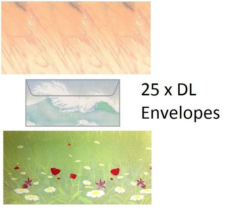 Decadry 25 DL Coloured Envelopes Lovely Designs 110 x 220 Envelopes