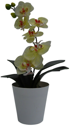 38cm Artificial Orchid Plant In White Plant Pot White Orchids