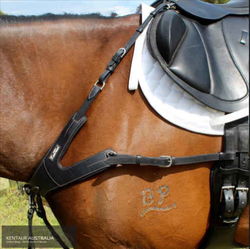 Choosing the right breastplate for your horse