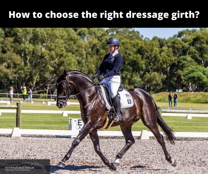 Choosing the right dressage girth for your horse's shape
