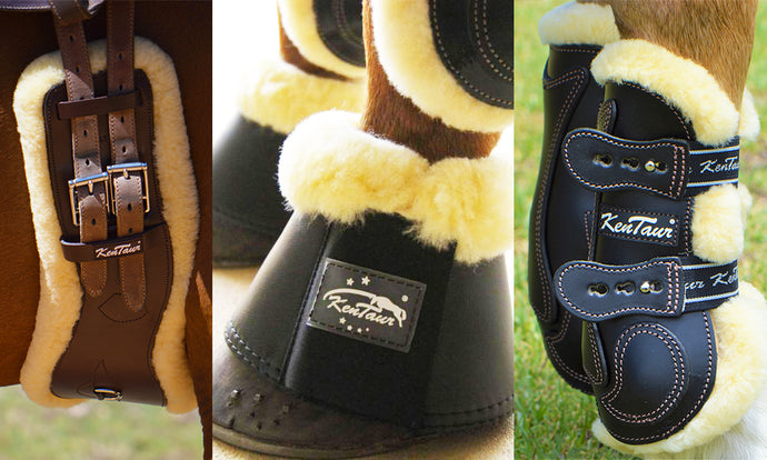 Five Reasons you should use Sheepskin Horse Gear