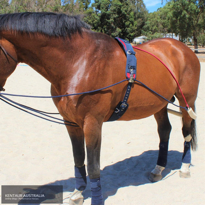 John Whitaker Training System Training Aids