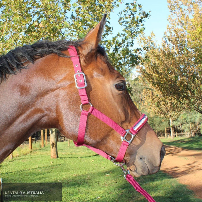 Kentaur 'Fleece' Halter Full / Red Halters & Flyveils