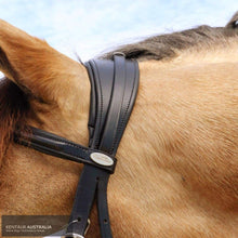 Load image into Gallery viewer, Kentaur 'comfort Poll' Bridle Cob