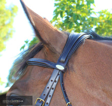 Load image into Gallery viewer, Kentaur Comfort Poll Bridle Brown / Full Bridles