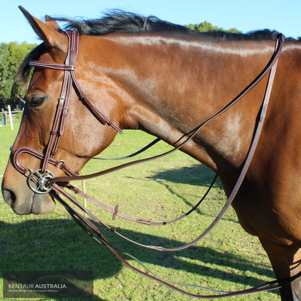 Kentaur Leather Draw Reins Training Aids