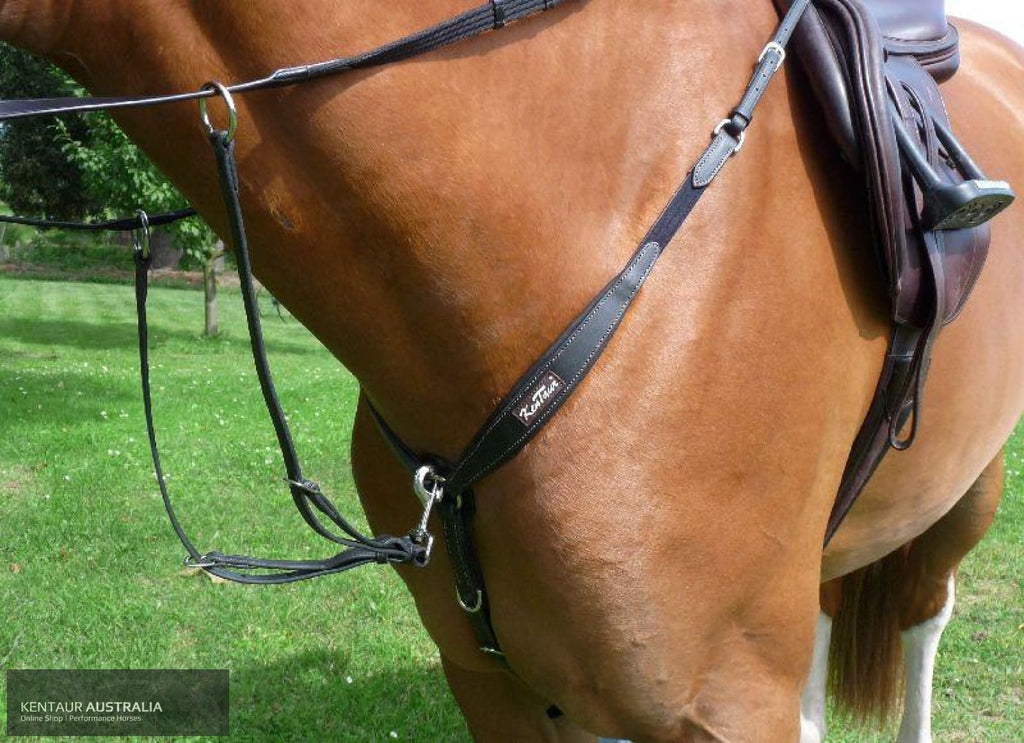 Kentaur Napoli Breastplate Black / Cob Breastplates