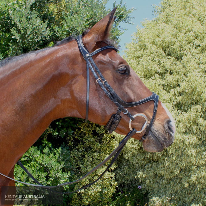 Montar Excellence Bridle Black / Full Bridles