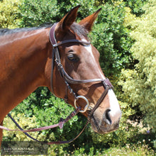 Load image into Gallery viewer, Montar Lyon Bridle Brown / Full Bridles