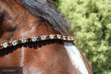 Load image into Gallery viewer, Montar Mighty Browband Brown/White / Full / Black Bridles