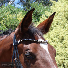 Load image into Gallery viewer, Montar Mighty Browband Mix Clear/Black / X-Full / Brown Bridles