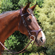 Load image into Gallery viewer, Montar Monarch Bridle Brown / Cob Bridles
