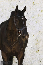 Load image into Gallery viewer, Montar Monarch Bridle Bridles