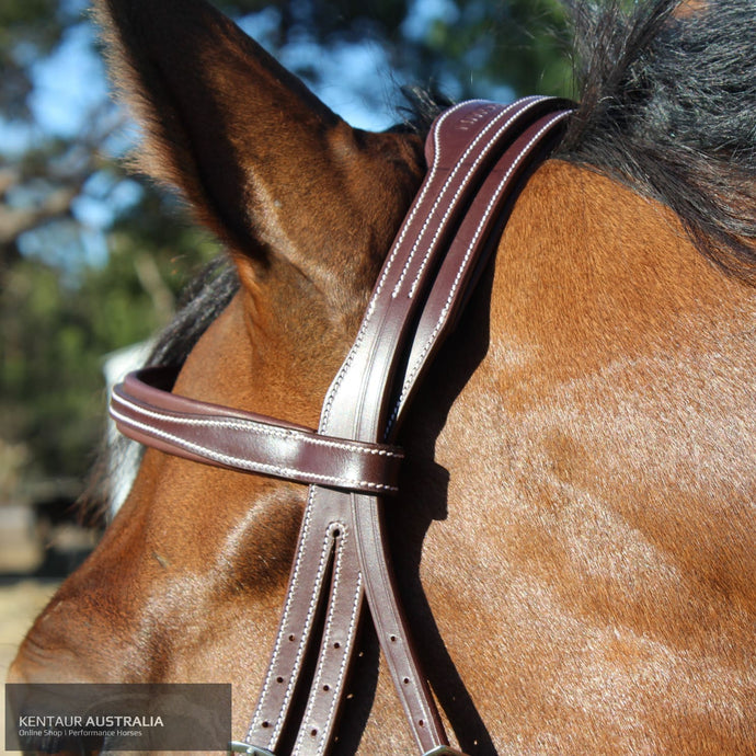 Silver Crown Arezzo Headpiece Bridles