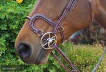 Load image into Gallery viewer, Silver Crown H Round Leather Noseband Bridles