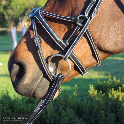 Silver Crown Spider Noseband Bridles