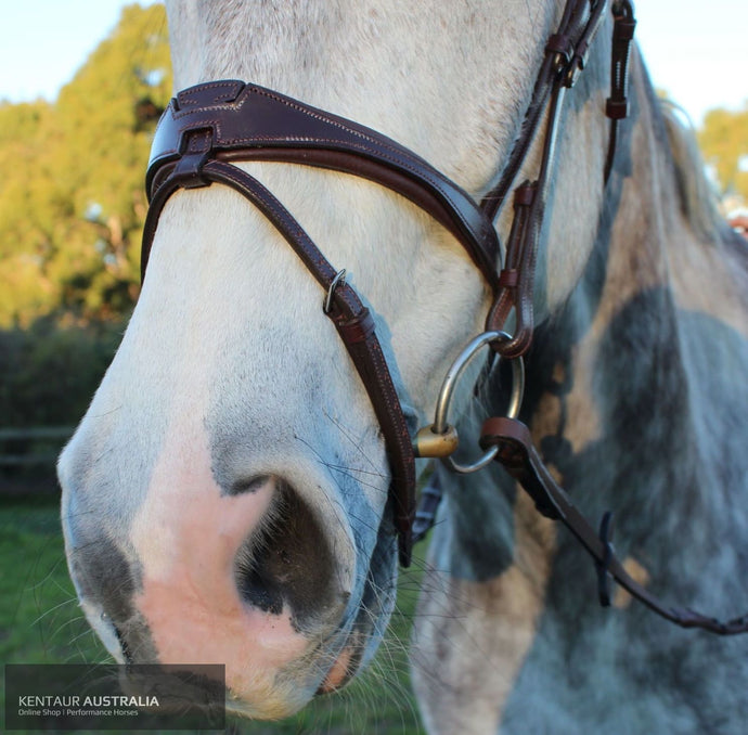 Silver Crown US Noseband Australian Nut (No White Stitching) Bridles
