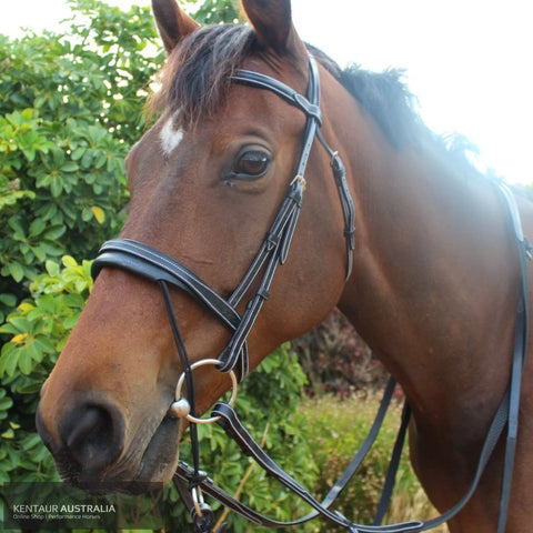 Silver Crown Valla Noseband Bridles