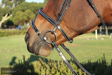 Load image into Gallery viewer, Silver Crown X Nose Ii Noseband Bridles