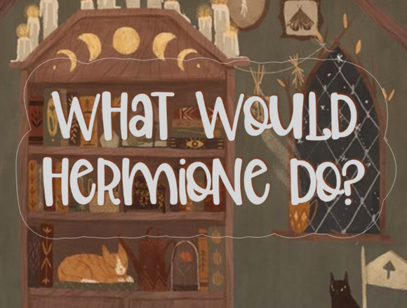What Would Hermione Do? - STICKER