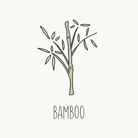 bamboo sustainable fabric guide loop swim