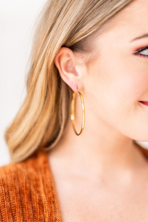 Around We Go Hoop Earrings:  Gold