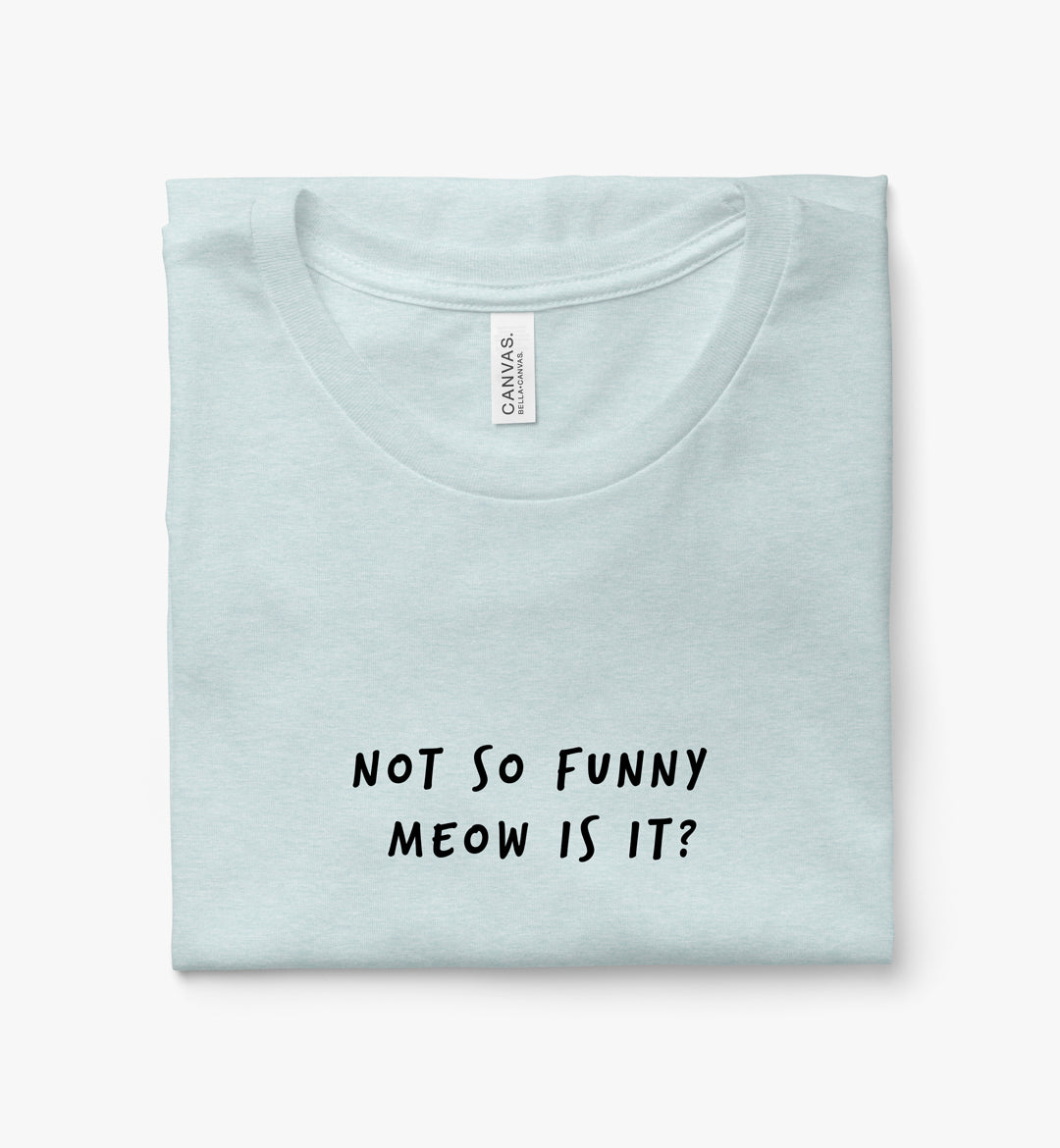 Not so Funny Meow Is It?