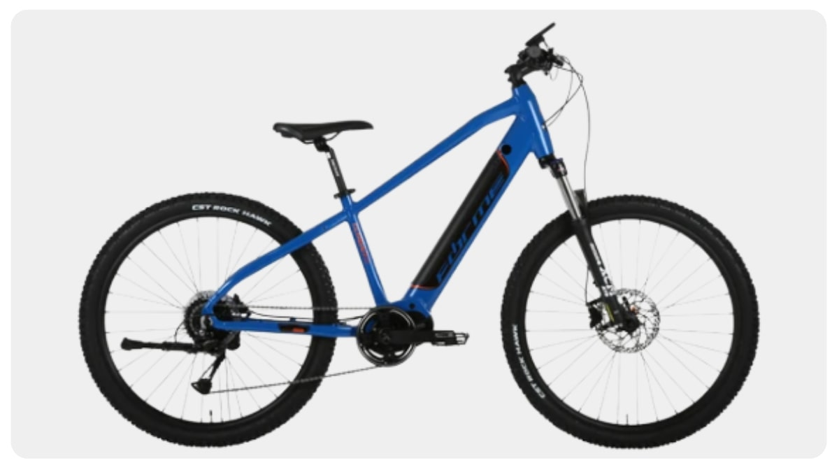 Best Electric Mountain Bike For Ladies