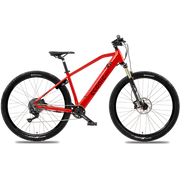 Econic One 36V Electric Mountain Bike 2020 - ElectricRider
