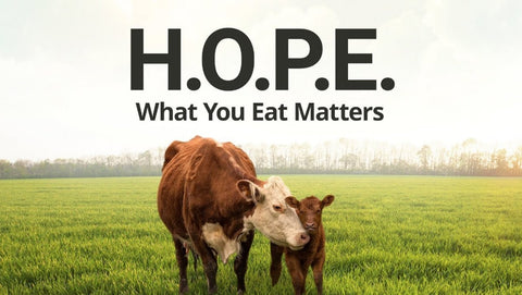 H.O.P.E: What You Eat Matters