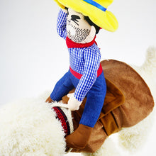 Load image into Gallery viewer, Funny dog clothes with a rider - Eve Merch