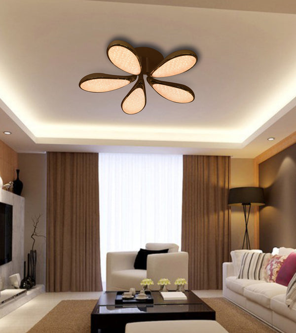 Ceiling Light for your living room