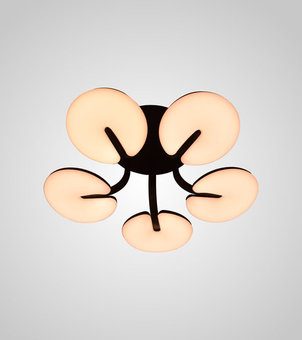 Naples Ceiling Mount lights