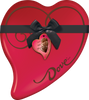DOVE Valentine Assorted Chocolate Candy Heart Gift Box 14.9-Ounce Tin