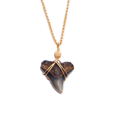 'kai' sharks tooth necklace - black