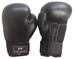 Boxing Gloves 10oz
