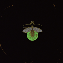 Load image into Gallery viewer, The Firefly by daparo yeung