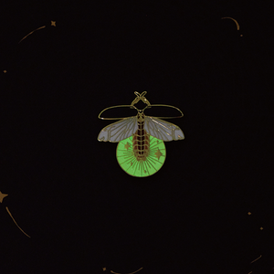 The Firefly by daparo yeung